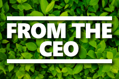 The Forest and The Trees: How Financial Product Comparison Saves You Money
