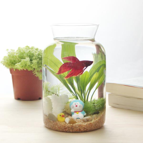 foto: chinatopstore.com