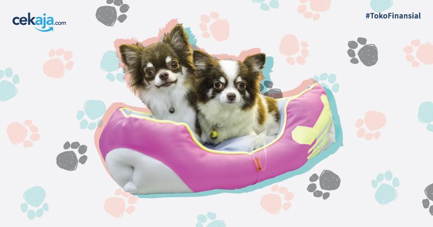 5 Tips Sukses Bisnis Pet Shop