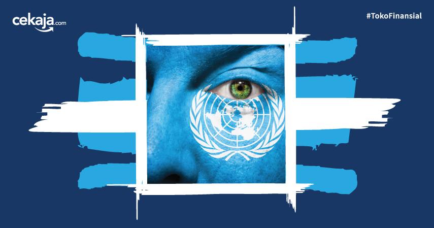 Organisasi Perserikatan Bangsa Bangsa (PBB)