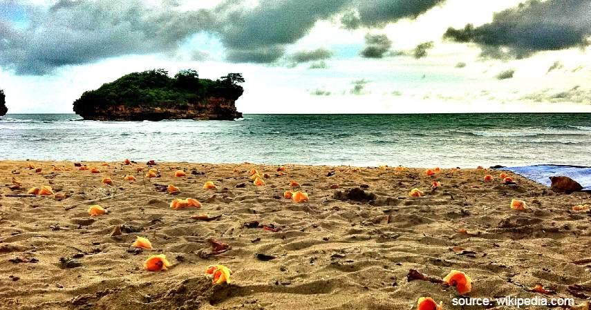 Pantai di Pacitan - Mudik Lewat Jalur Selatan Jawa
