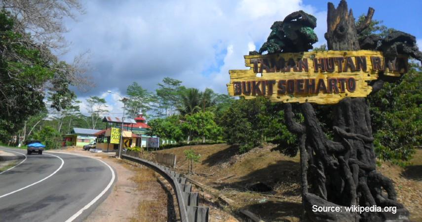 Taman Hutan Raya Bukit Soeharto - Menjelajah 8 Objek Wisata di Daerah Calon Ibu Kota Baru Indonesia