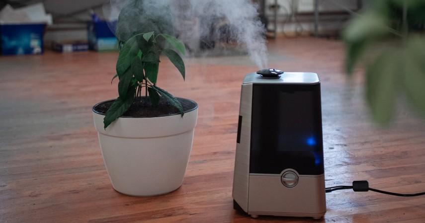 Menggunakan air purifier - Melawan Polusi Udara di Rumah yang Gak Kalah Bahaya dengan di Luar