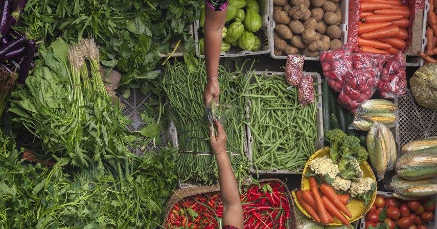 Bisnis bahan makanan