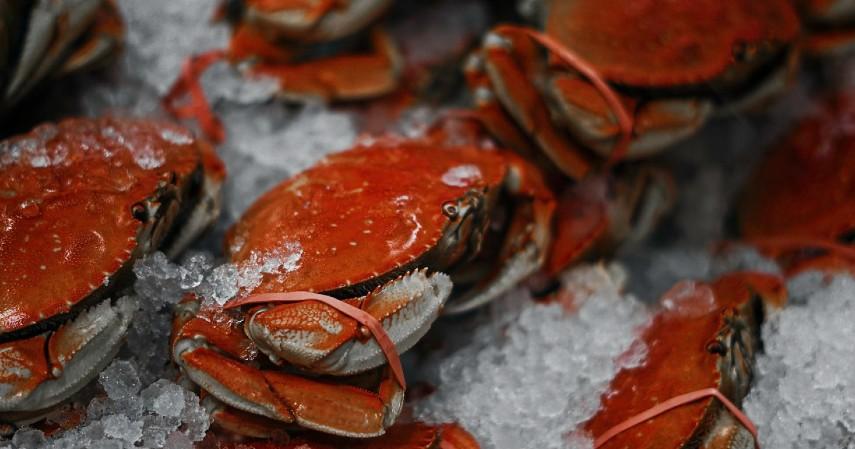 Gama ikan bakar seafood - Kuliner Seafood yang Enak dan Murah di Semarang Dijamin Bikin Ngiler