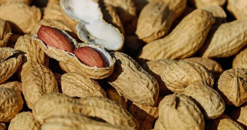 Kacang-kacangan - 5 Pilihan Cemilan Sehat yang Baik untuk Tubuhmu