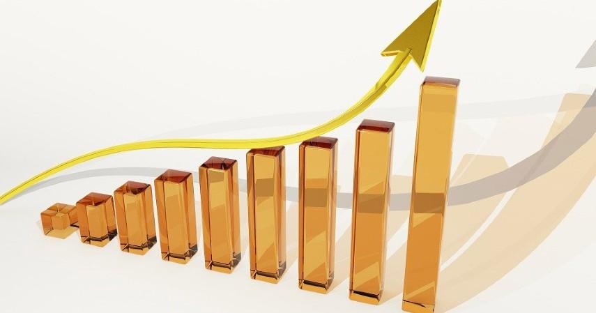 Reksadana - Rekomendasi 5 Produk Keuangan Untuk Pengantin Baru