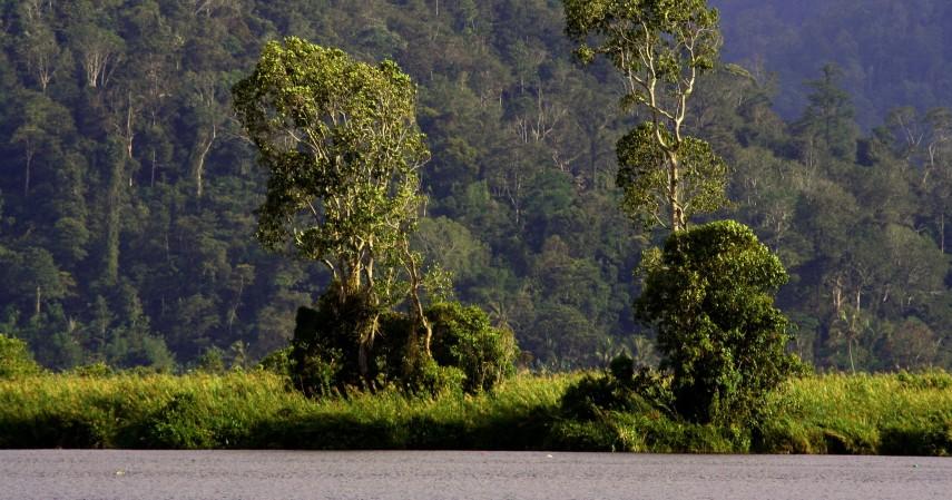 Taman Nasional Lore Rindu - Menikmati Jalan-jalan Seru ke Palu