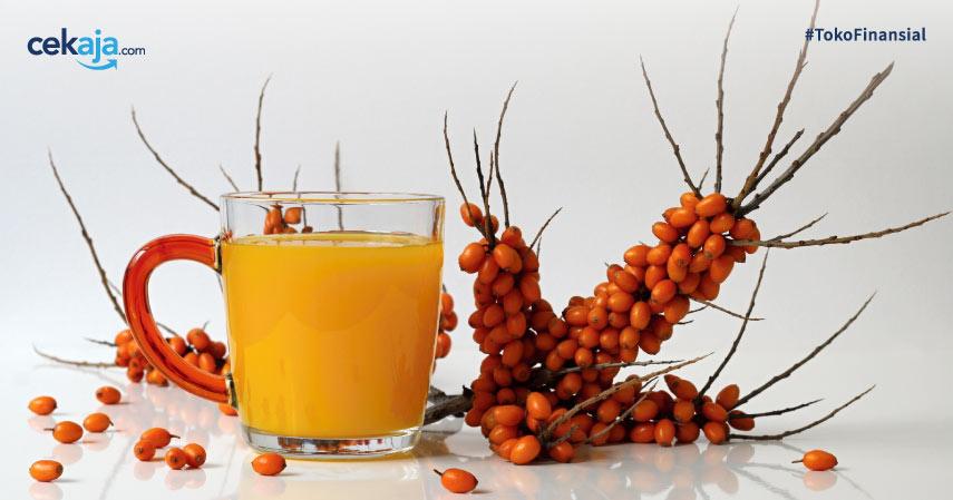 Jenis Minuman Pereda Stress Alami yang Terbukti Ampuh dan Perlu Kamu Ketahui