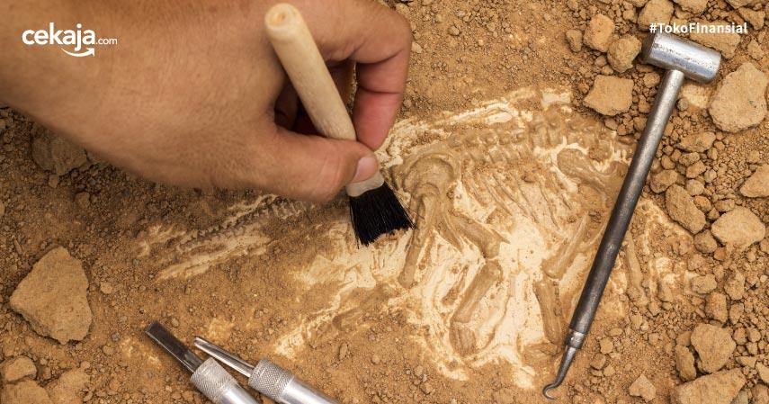 Prospek Pekerjaan Jurusan Arkeologi Dengan Gaji Tinggi