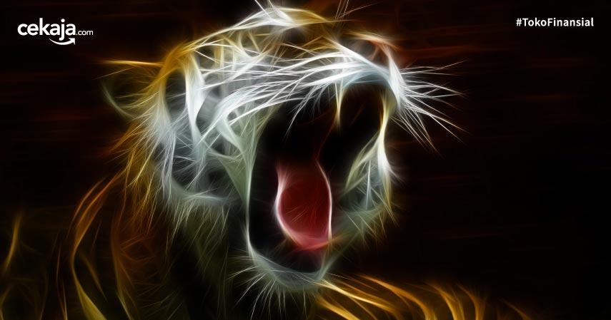 Karakter dan Kepribadian Shio Macan di Ramalan Tahun 2020