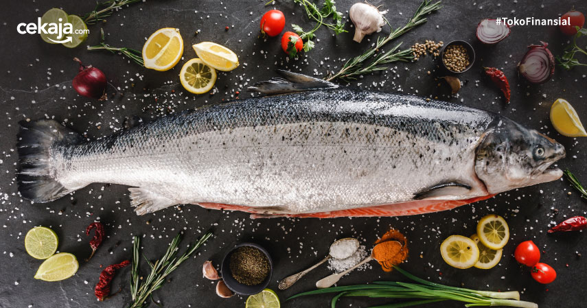 Budidaya Ternak Ikan Salmon Berpeluang Besar, Ini Caranya!