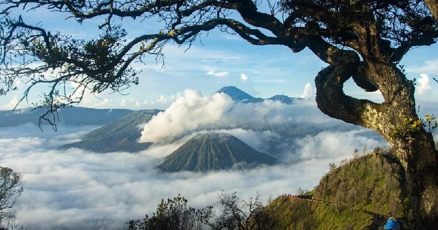 Jawa Timur - Ini 8 Destinasi Wisata di Indonesia Paling Hits di Medsos!