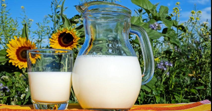 Susu - 10 Makanan Penenang Pikiran dan Hati Bermanfaat Lawan Stres