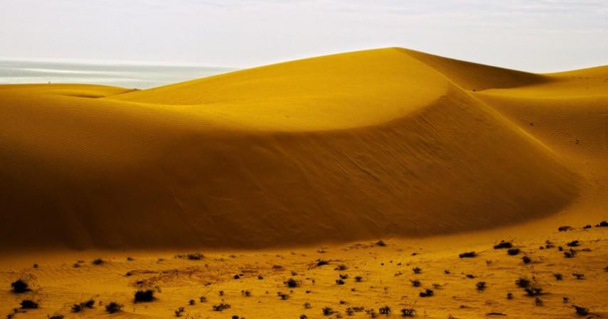 The Sand Dunes - Mengenal Destinasi Wisata Vietnam Tuan Rumah SEA Games 2021