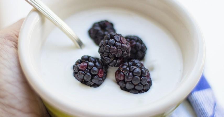 Yogurt probiotik - 15 Makanan Untuk Penderita Diabetes yang Paling Direkomendasikan