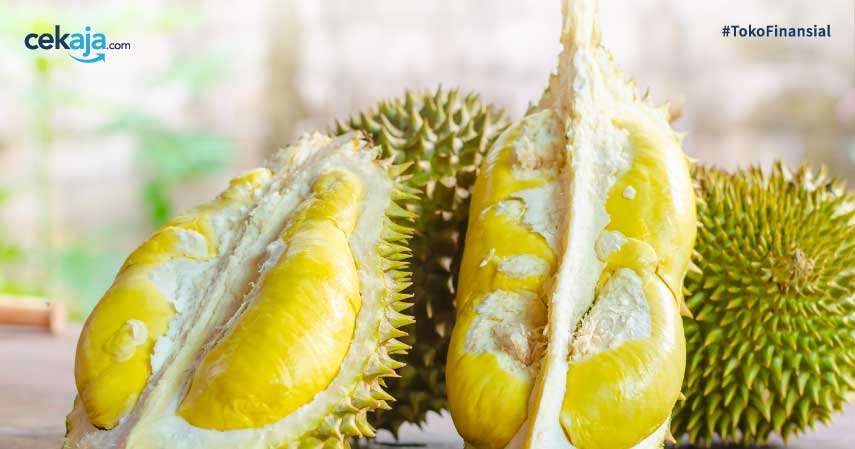 Cuan dari Durian: 8 Olahan Durian yang Menarik Jadi Ladang Bisnis