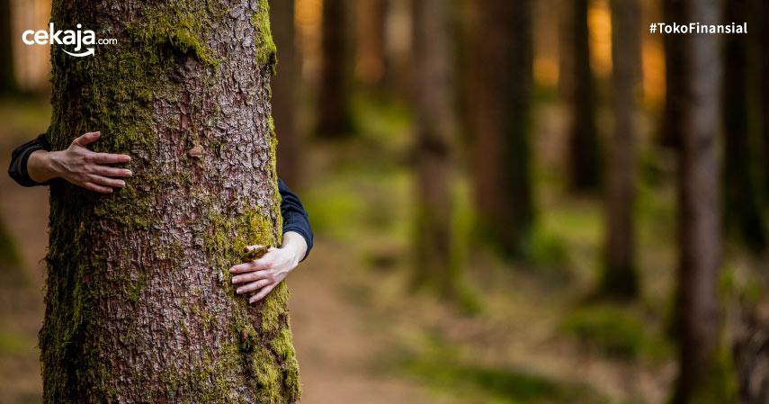 Daftar Tokoh Pejuang Lingkungan Hidup Di Seluruh Dunia
