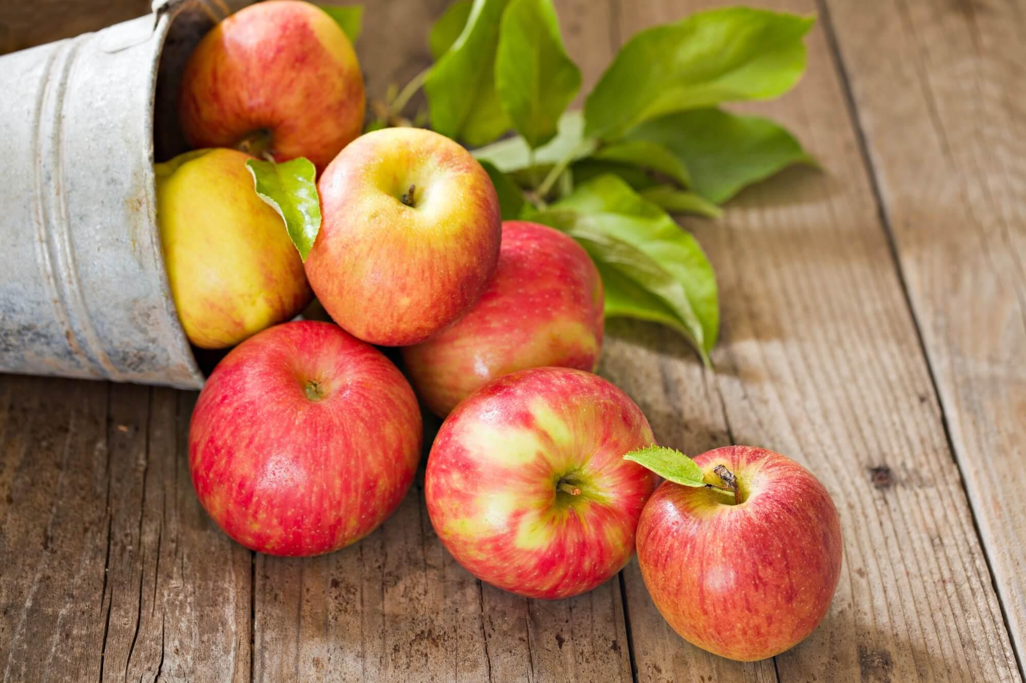 Apel - Pengen Lebih Sehat di 2020 Konsumsi 10 Jenis Makanan Ini