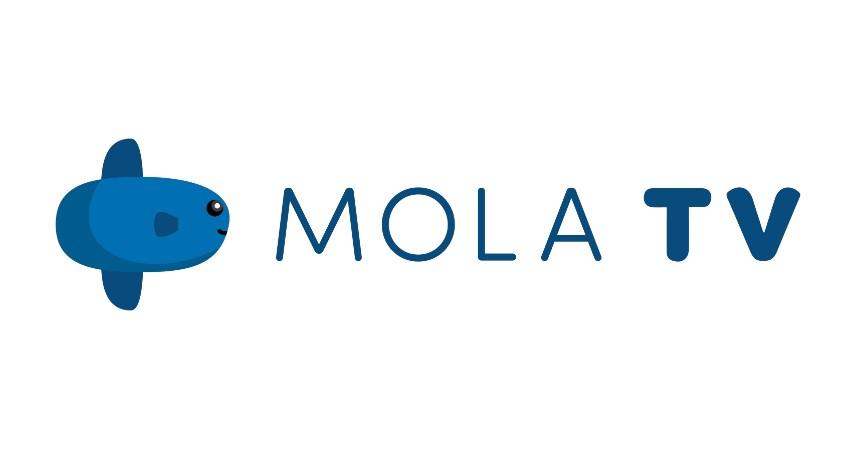 MOLA TV - Daftar Situs Nonton Streaming Liga Inggris 2019 2020