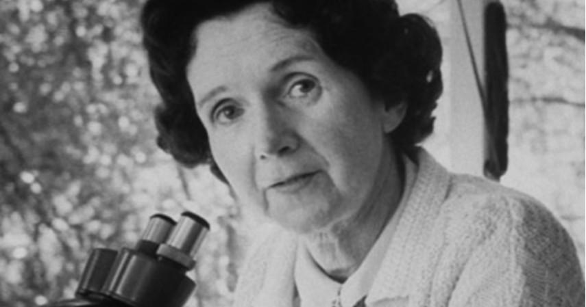 Rachel Carson- Ilmuan - Daftar Tokoh Pejuang Lingkungan Hidup Di Seluruh Dunia