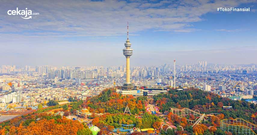 5 Fakta Menarik Kota Daegu di Korea Selatan