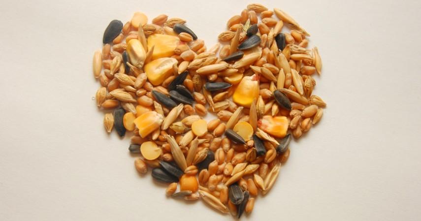 Adonan Aneka Biji-bijian - 10 Obat Herbal Untuk Kolesterol Dijamin Alami dan Efektif