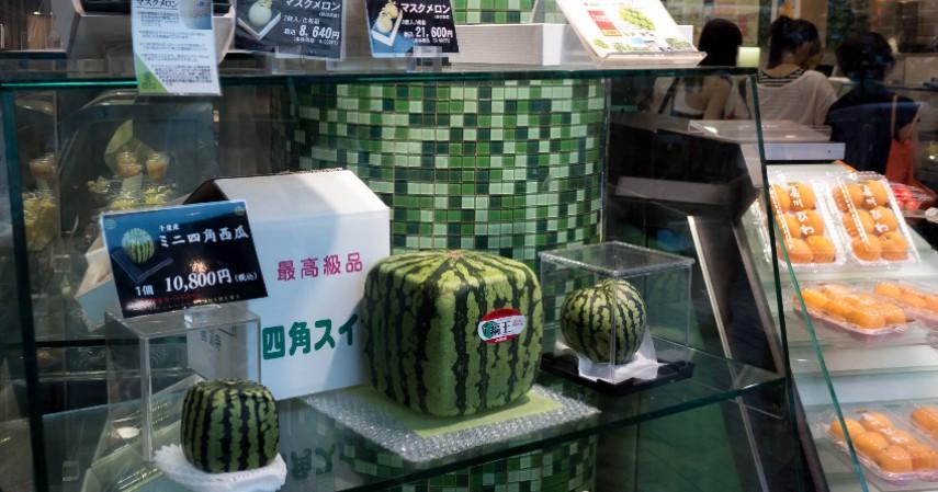 Bisnis semangka kotak - Konsep Bisnis Paling Unik di Dunia