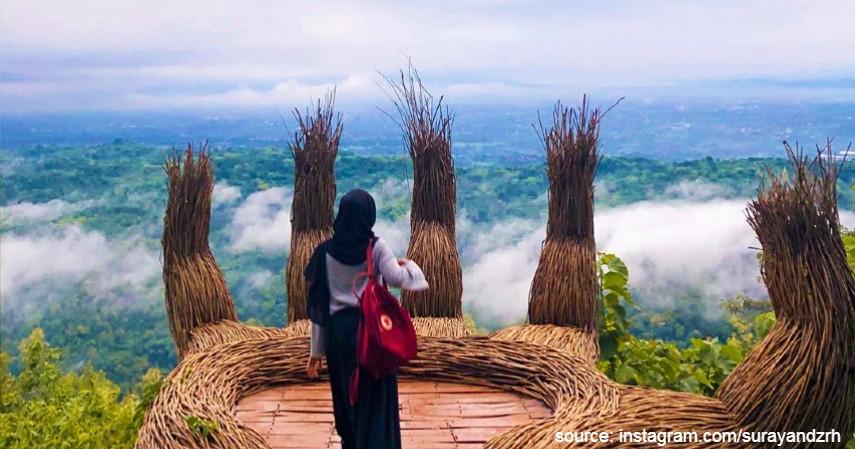 Hutan pinus pengger - Lagi di Yogya Jangan Lupa Main ke-6 Wisata Keren Ini