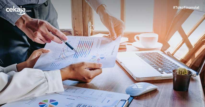 pengertian dan tugas dirjen pajak