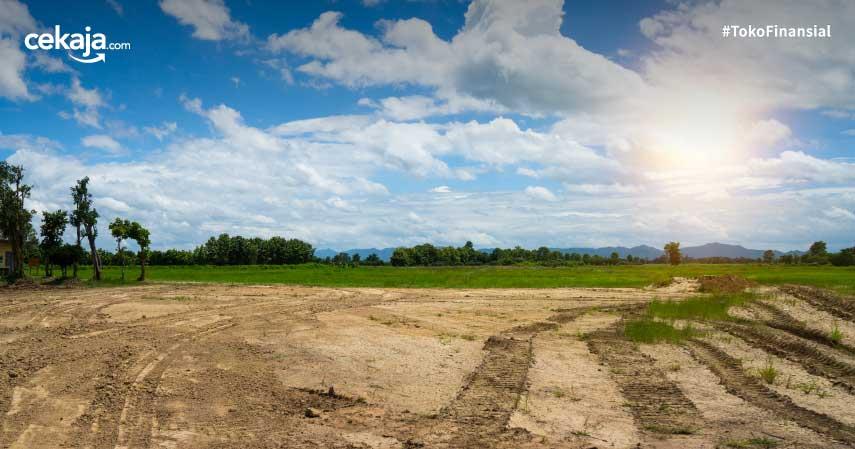 tips penting membeli tanah murah