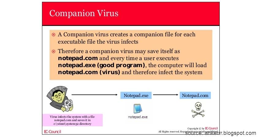 Companion Virus - Kenali 10 Jenis Virus Komputer beserta Cara Pencegahannya