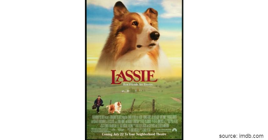 Lassie - Rekomendasi 6 Film Tentang Persahabatan dengan Hewan