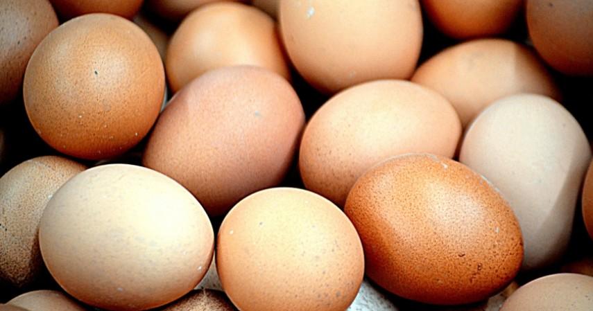 Telur - Makanan Tahan Lama yang Bisa Diandalkan Saat Social Distancing