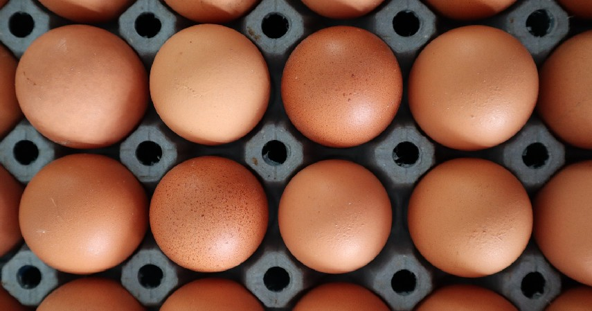Cara melihat kesegaran telur - 9 Hacks Memasak yang Berguna Selama Bulan Puasa