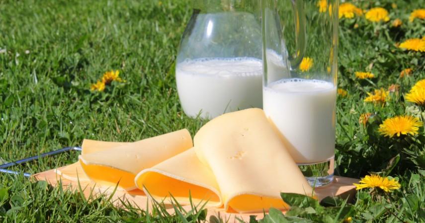 Protein - Wajib Stok Makanan Bergizi yang Harus Ada Selama Corona