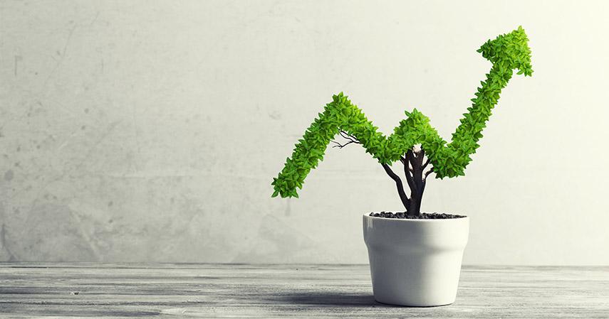 Investasi jangka pendek dan panjang - 7 Tips Mengelola Uang untuk Single Parent Asuransi Jiwa Ciputra Life Bisa Membantu