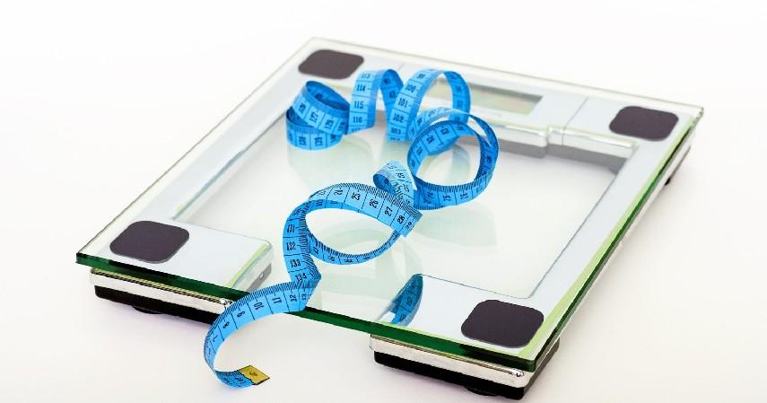 Membantu Menurunkan Berat Badan - - 8 Manfaat Kelapa Ijo Bagi Tubuh Bisa Cegah Penyakit Berbahaya