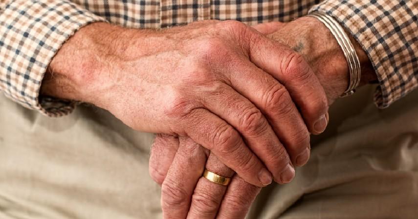 Mencegah Penuaan Dini - 8 Manfaat Kelapa Ijo Bagi Tubuh Bisa Cegah Penyakit Berbahaya
