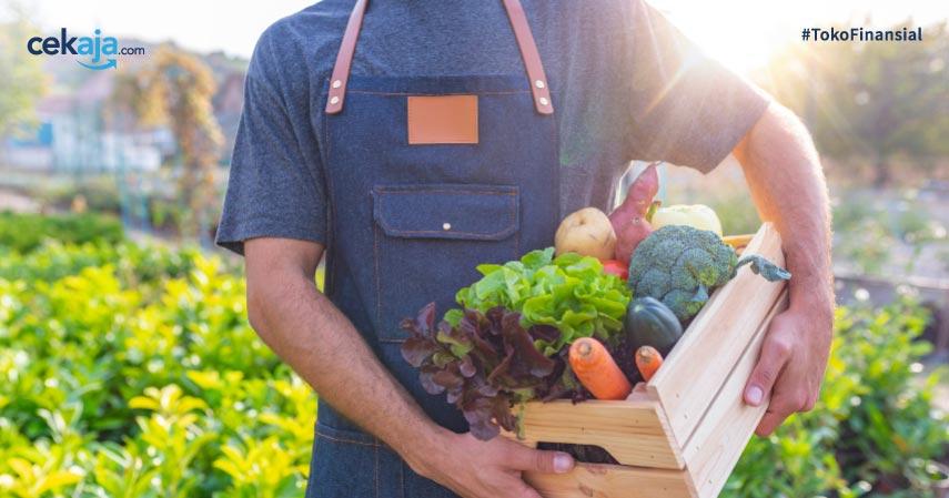 Tips Menjaga Sayuran Tetap Segar