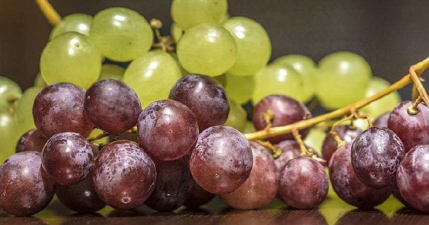 Anggur - 8 Buah Tinggi Antioksidan yang Mudah Ditemukan