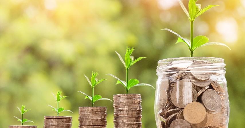 Berinvestasi - Tips Menghemat Pengeluaran Dimasa Krisis Keuangan