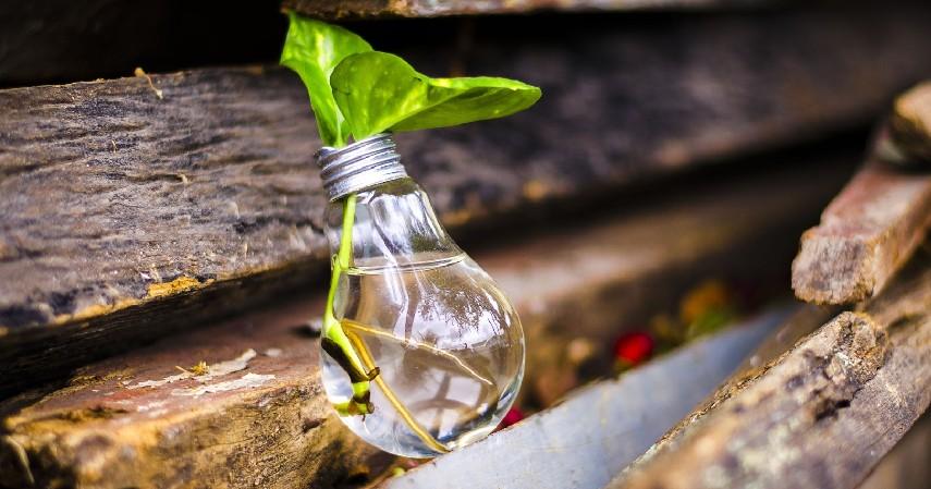 Kreatif mendaur ulang - 7 Tips Mengurangi Sampah Plastik di Kehidupan Sehari-hari