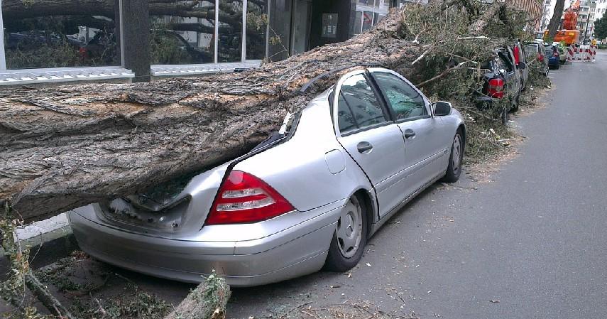 Mengetahui dan Memilih Jenis Asuransi Kendaraan - Begini Cara Daftar Asuransi Kendaraan yang Wajib Diketahui
