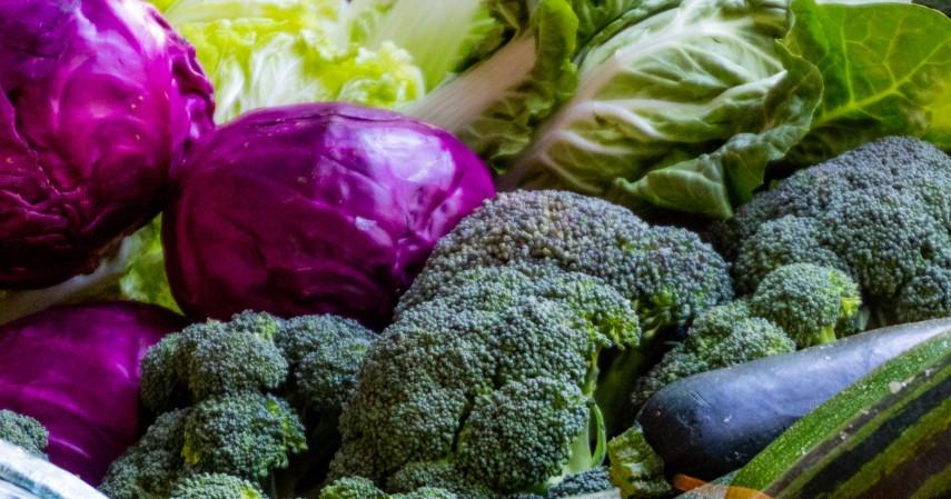 Sayuran - Makanan Terbaik Untuk Penderita Kanker