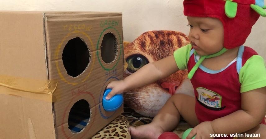 Sortir Warna Pakai Kardus Bekas - Ide Permainan Montessori Agar Anak Tidak Bosan di Rumah