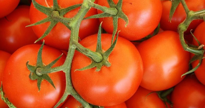 Tomat - 8 Buah Tinggi Antioksidan yang Mudah Ditemukan