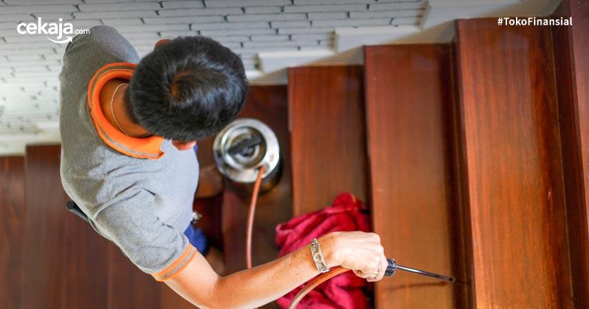 8 Cara Membasmi Rayap dari Perabotan Rumah Ini Dijamin Ampuh
