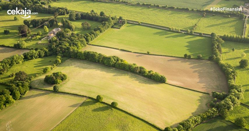 Lokasi Tanah yang Bagus untuk Investasi