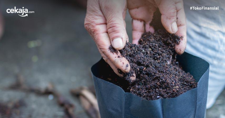 Jenis Pupuk Organik Terbaik untuk Bercocok Tanam di Rumah